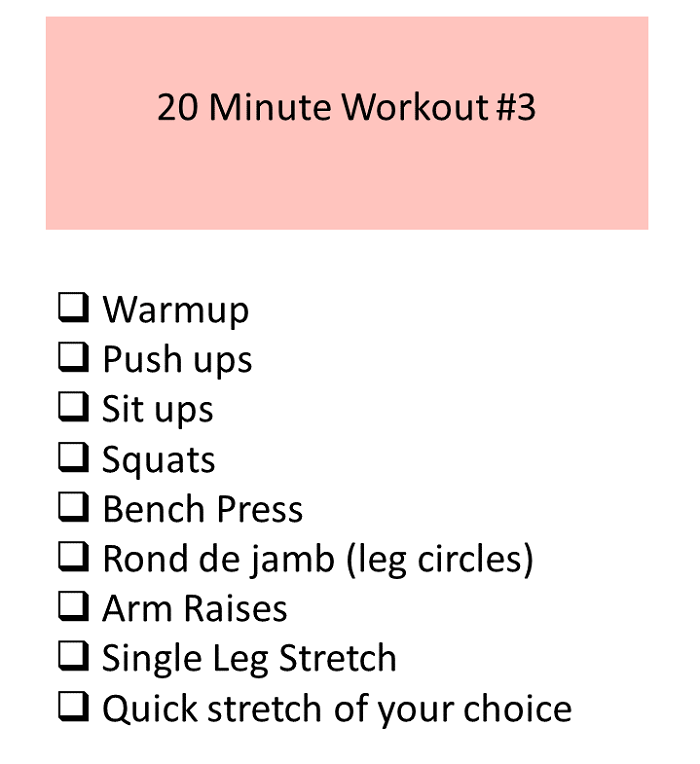 20 minute workout by fitwise